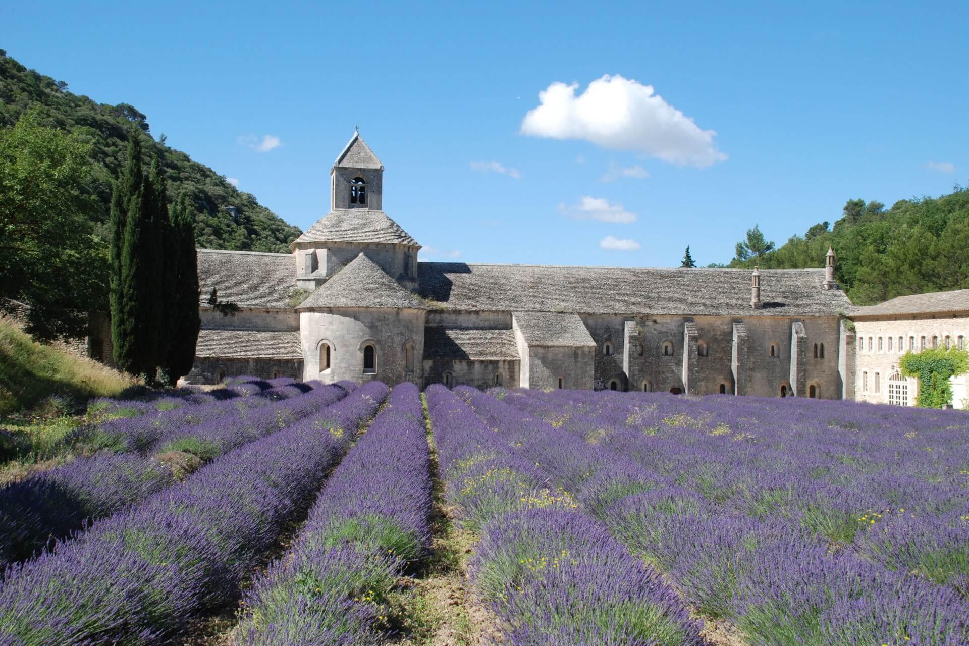 Gordes Abbaye Sénanque